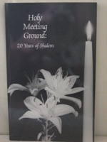 Holy Meeting Ground: 20 Years of Shalem, Clark, Connie (Editor)