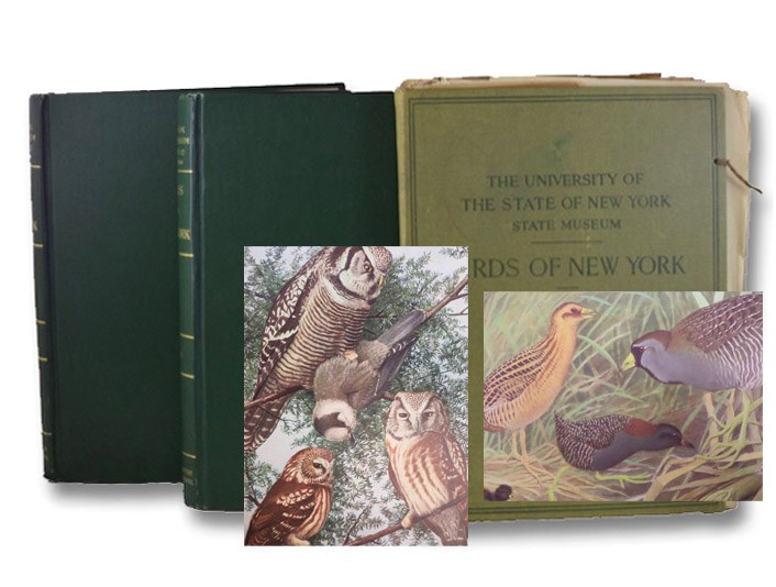 Birds of New York, Complete in Two Volumes with Supplemental Volume of Plates (New York State Education Department, Memoir 12), Eaton, Elon