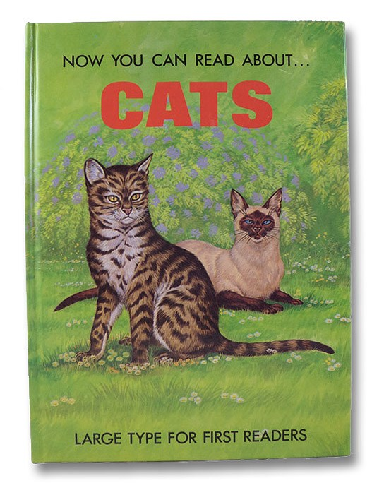 Now You Can Read About... Cats, Attmore, Stephen