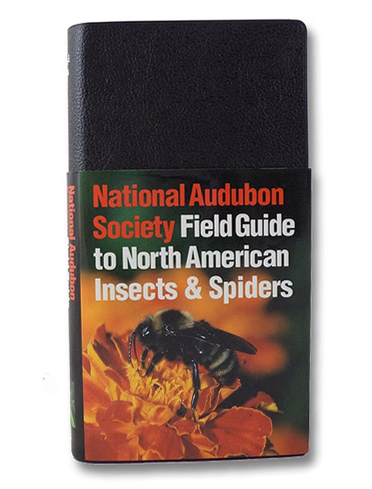 National Audubon Society Field Guide to North American Insects and Spiders, Milne, Lorus & Margery