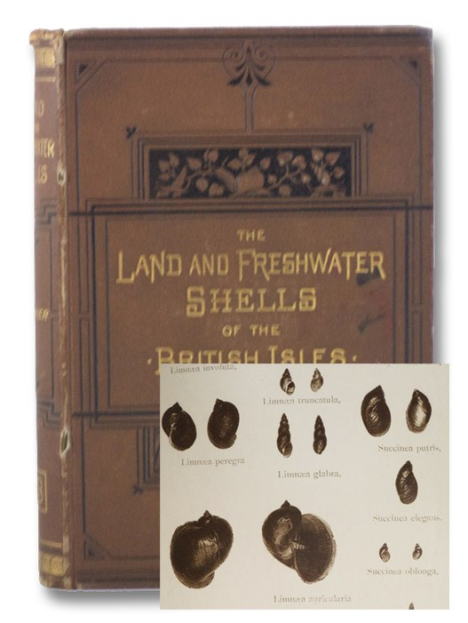 The Land and Freshwater Shells of the British Isles. With Illustrations of All the Species., Rimmer, Richard