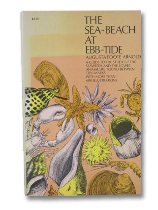Sea-Beach at Ebb-Tide, Arnold, Augusta Foote