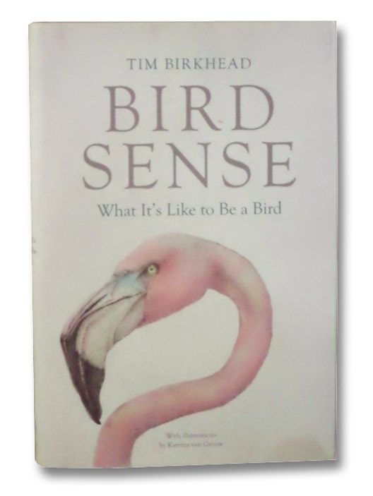 Bird Sense: What It's Like to Be a Bird, Birkhead, Tim