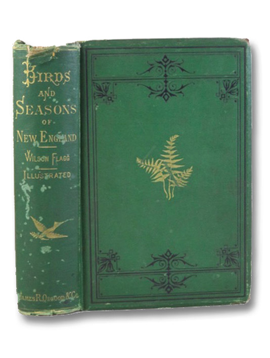 The Birds and Seasons of New England, Flagg, Wilson