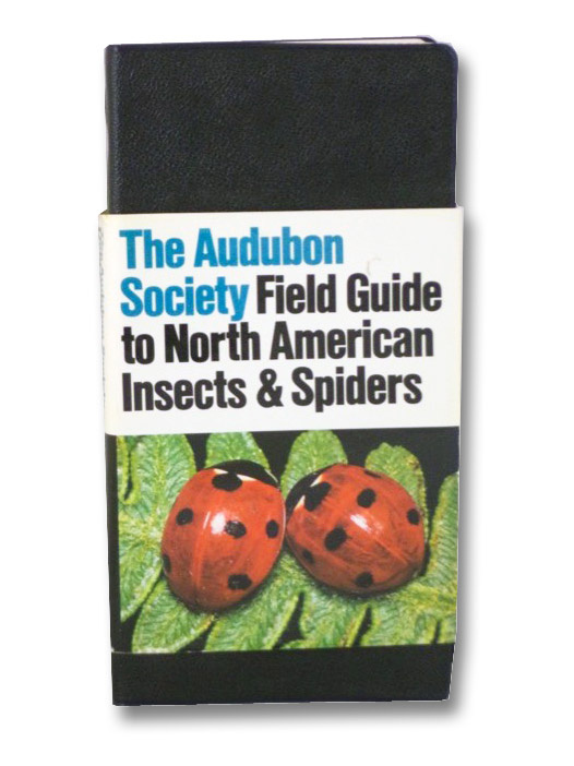 The Audubon Society Field Guide to North American Insects and Spiders, Milne, Lorus; Milne, Margery; Rayfield, Susan