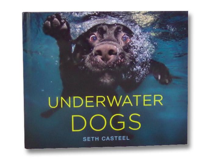 Underwater Dogs, Casteel, Seth
